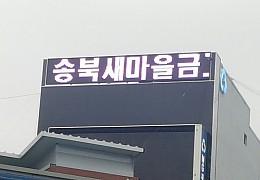 인천새마을금고1.jpg